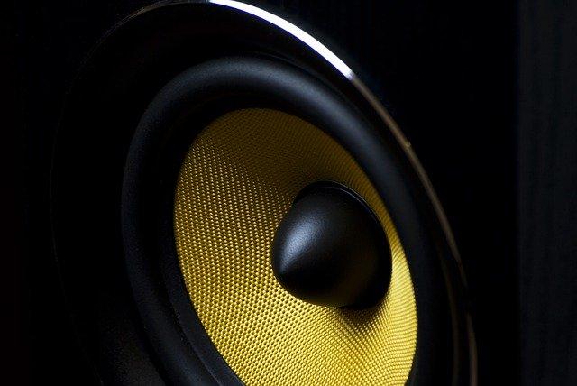 Lautsprecher-Membran